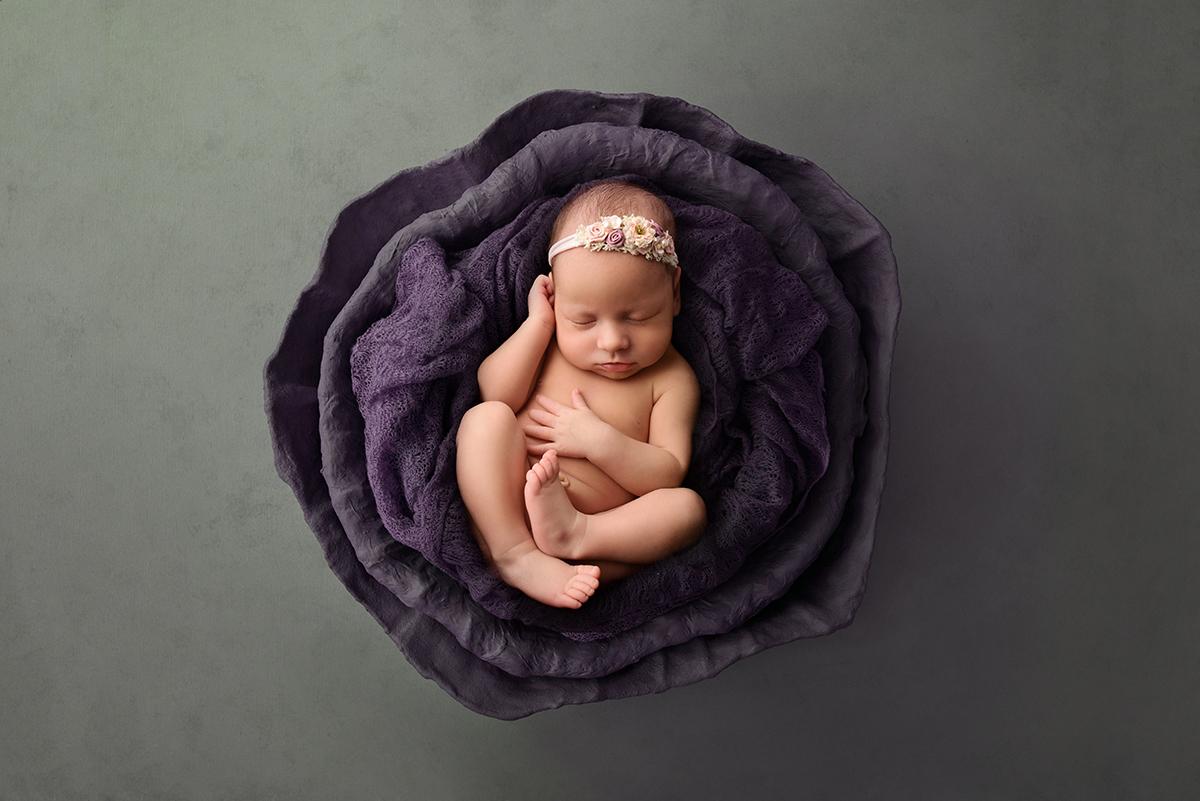 Baby Photos Mornington