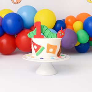 Cake Smash Cake-16